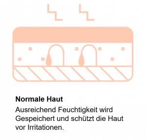 Normal Haut